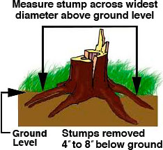 How to measure for stump removal estimates